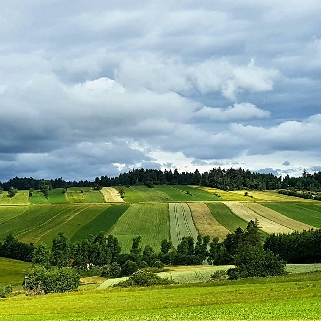 Различные оттенки зелёного в Оттеншлаг