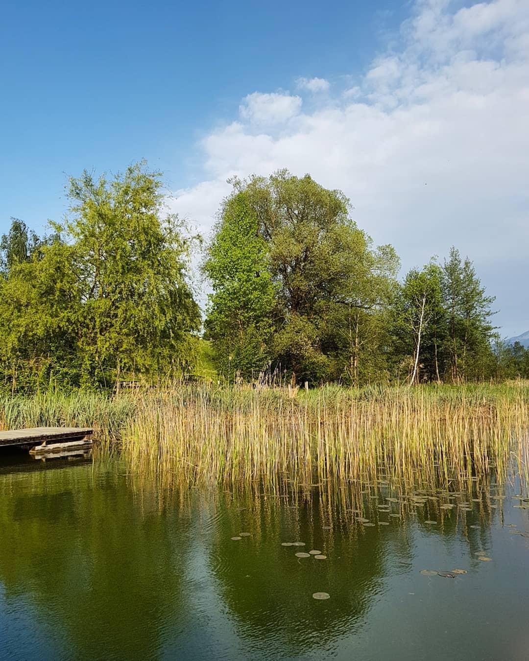 Ein sonniger Tag am Turnersee