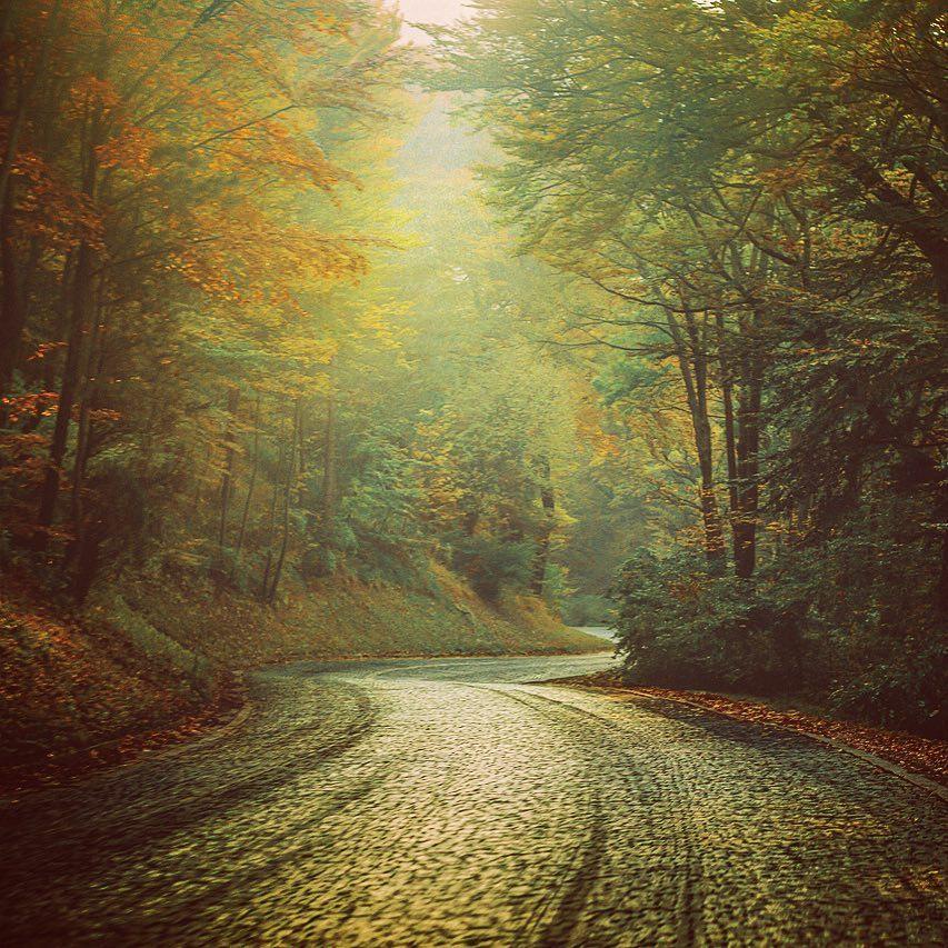 Leopoldsberg im Herbst