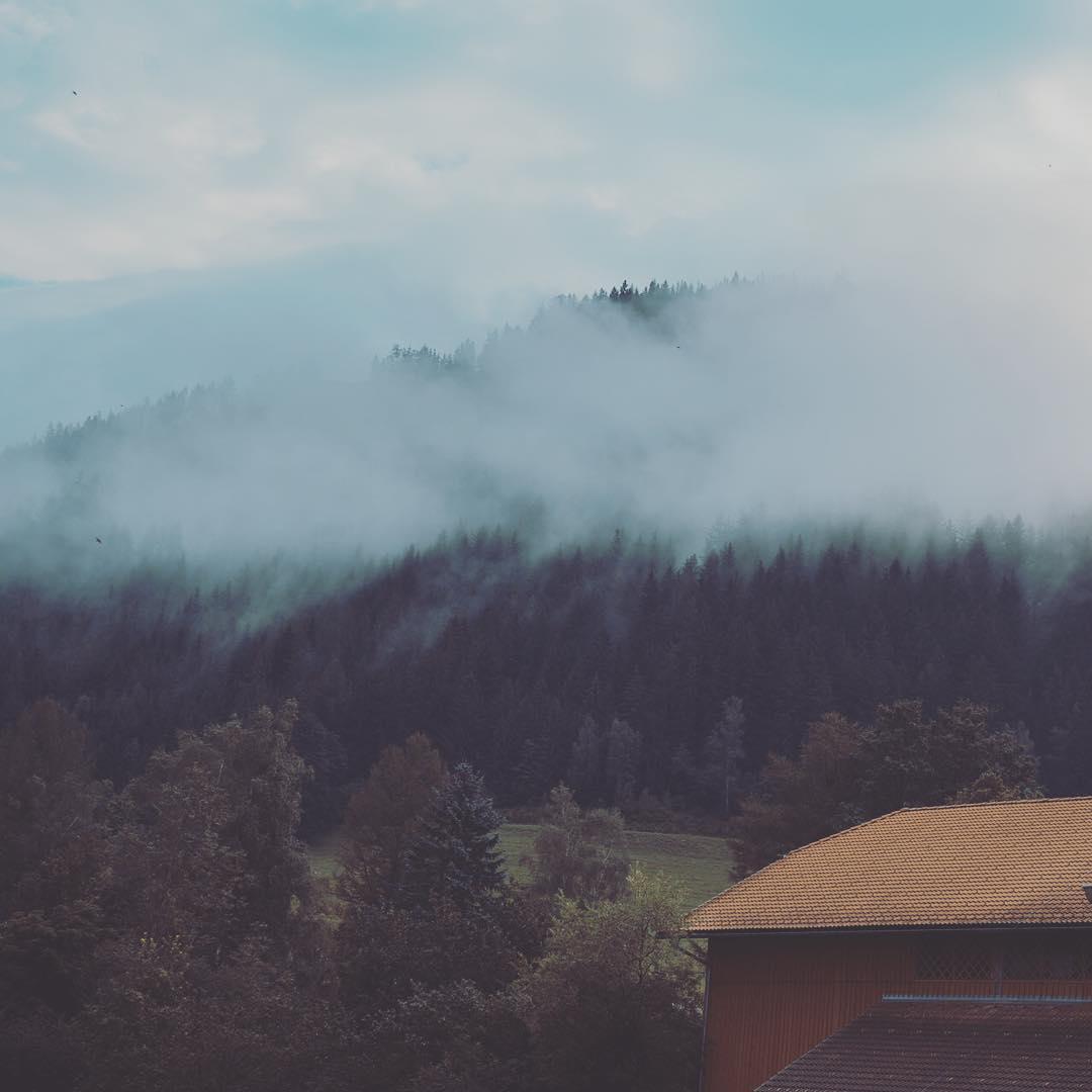 Blick auf Wälder im Nebel
