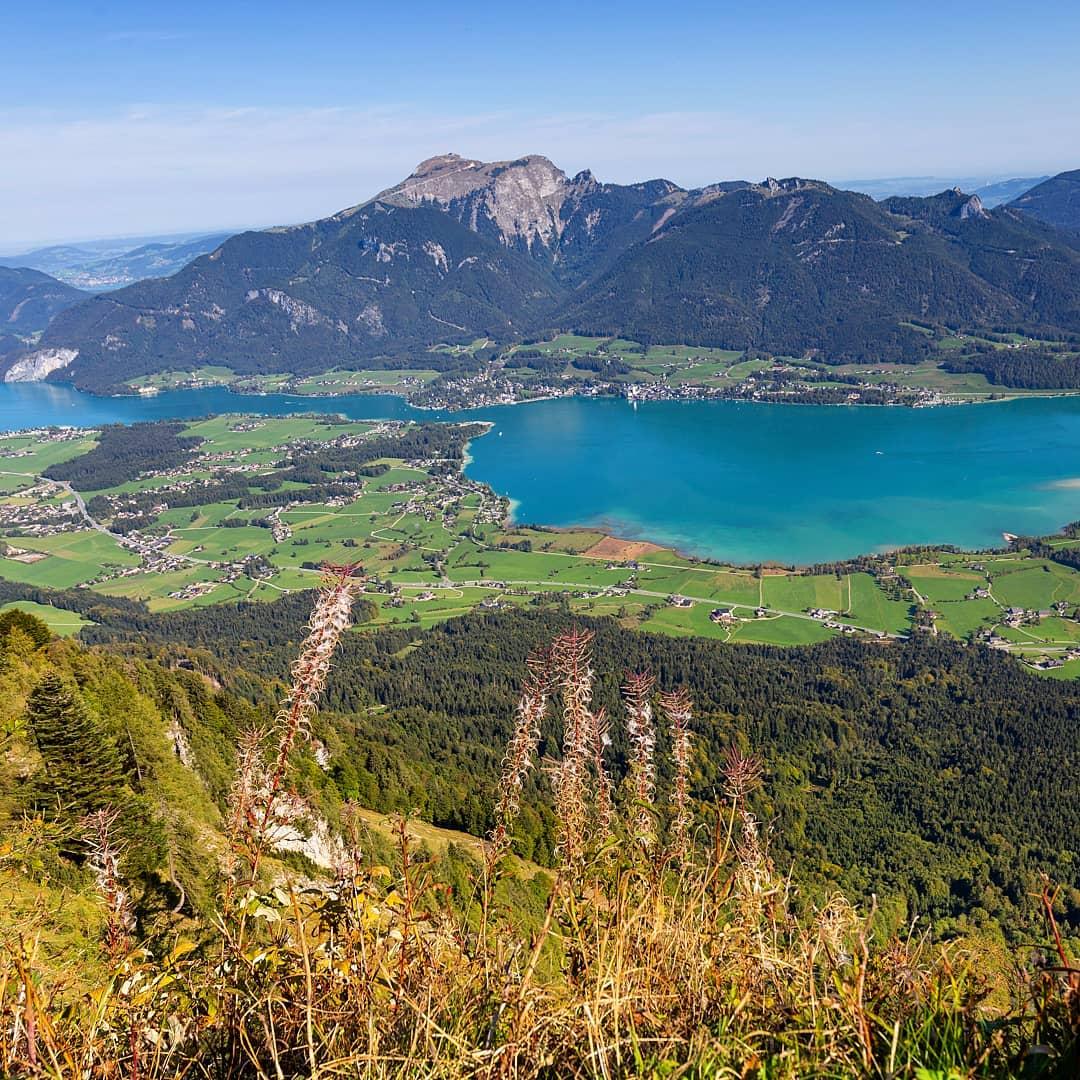 Aussicht über den Wolfgangsee