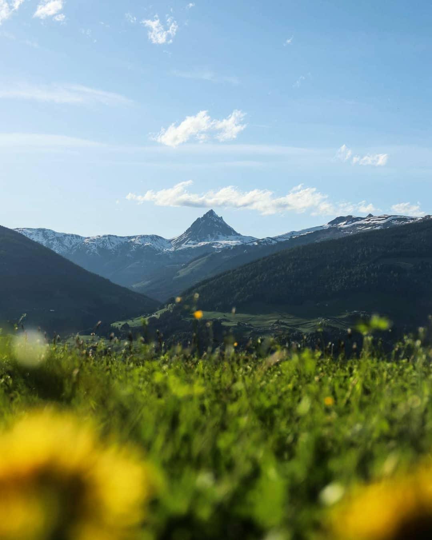 Herrlicher Ausblick auf eine sommerliche alpine Landschaft