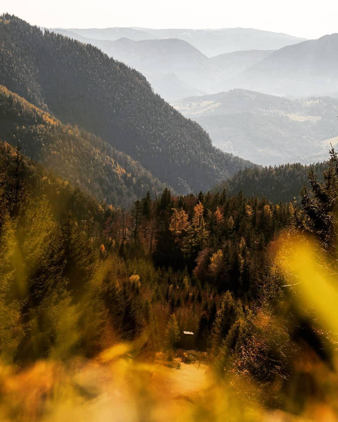 Wälder im Herbst rund um die Rax