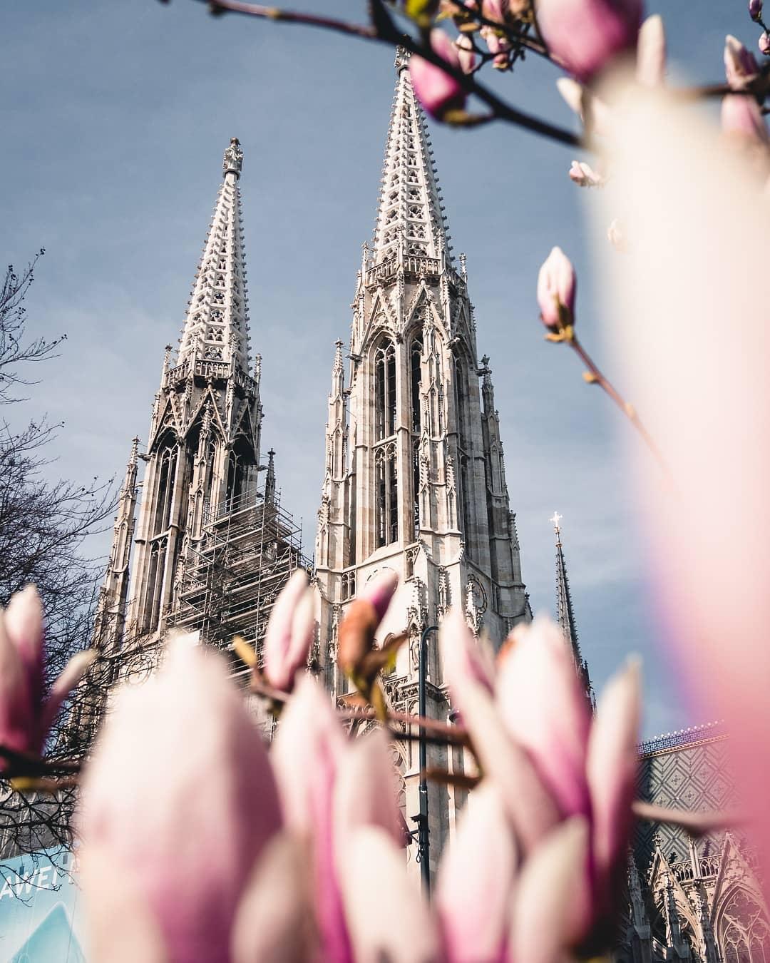 Votivkirche im Frühling
