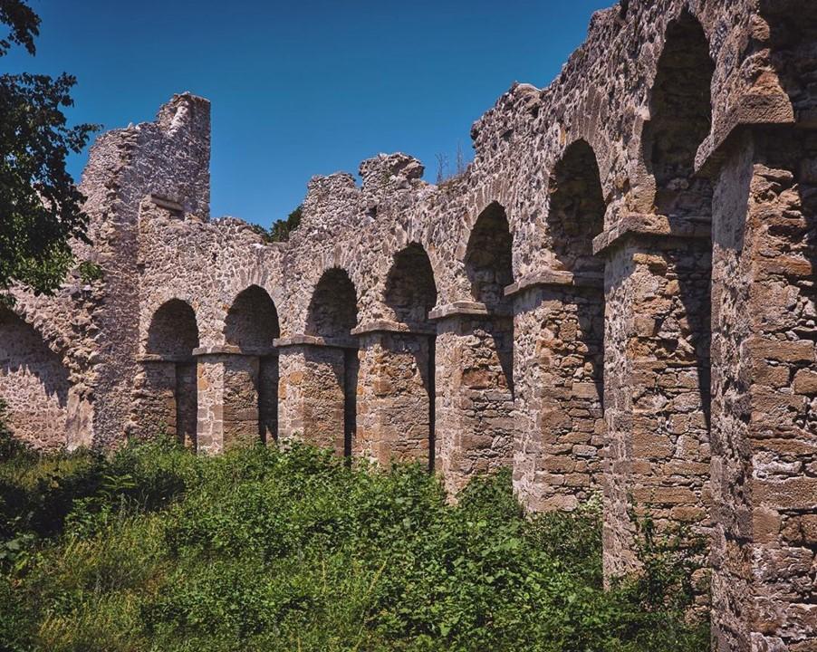 Развалины амфитеатра в сосновом лесу на Календерберге.