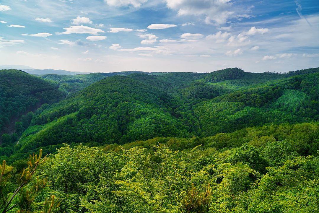 Вид на природный парк Спарбах