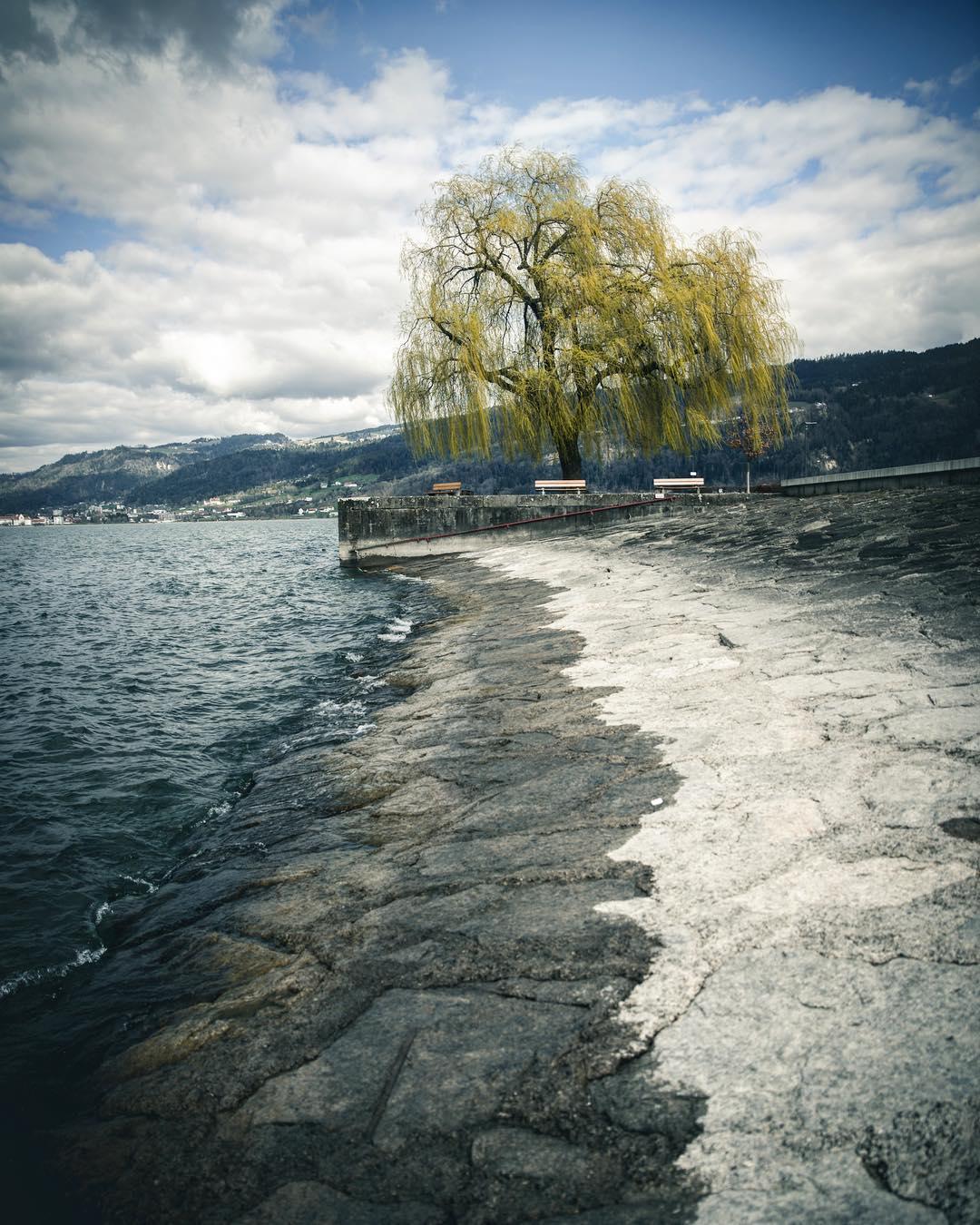 Das Ufer des Bodensees in Bregenz