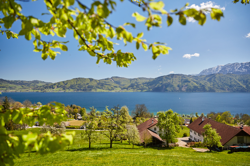 Similio Nussdorf-am-Attersee