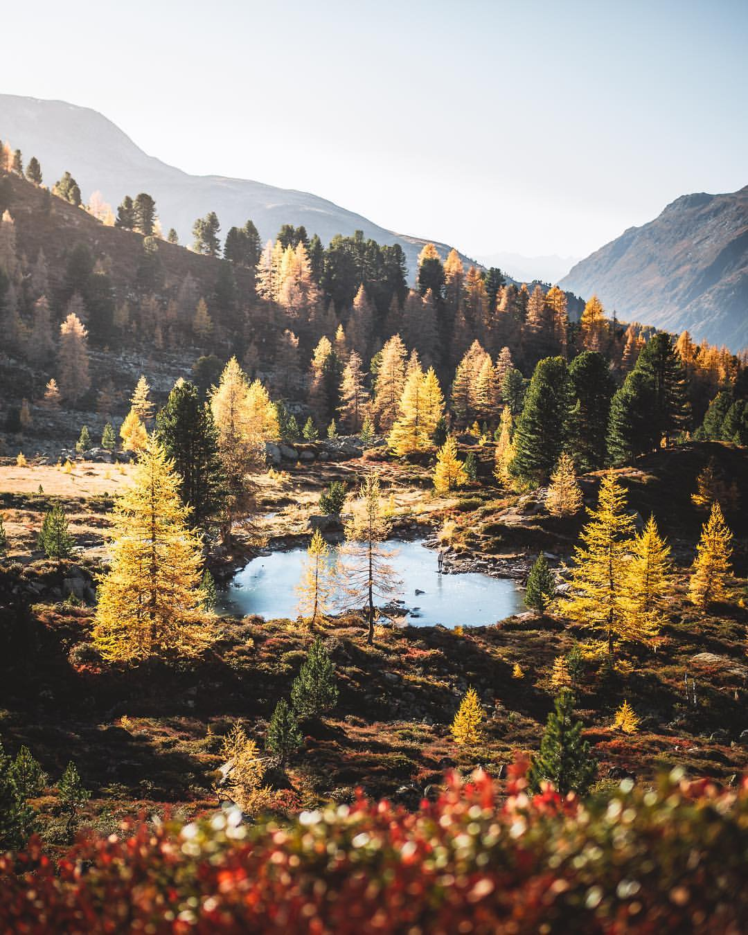 Ein goldener Herbst am Berglisee