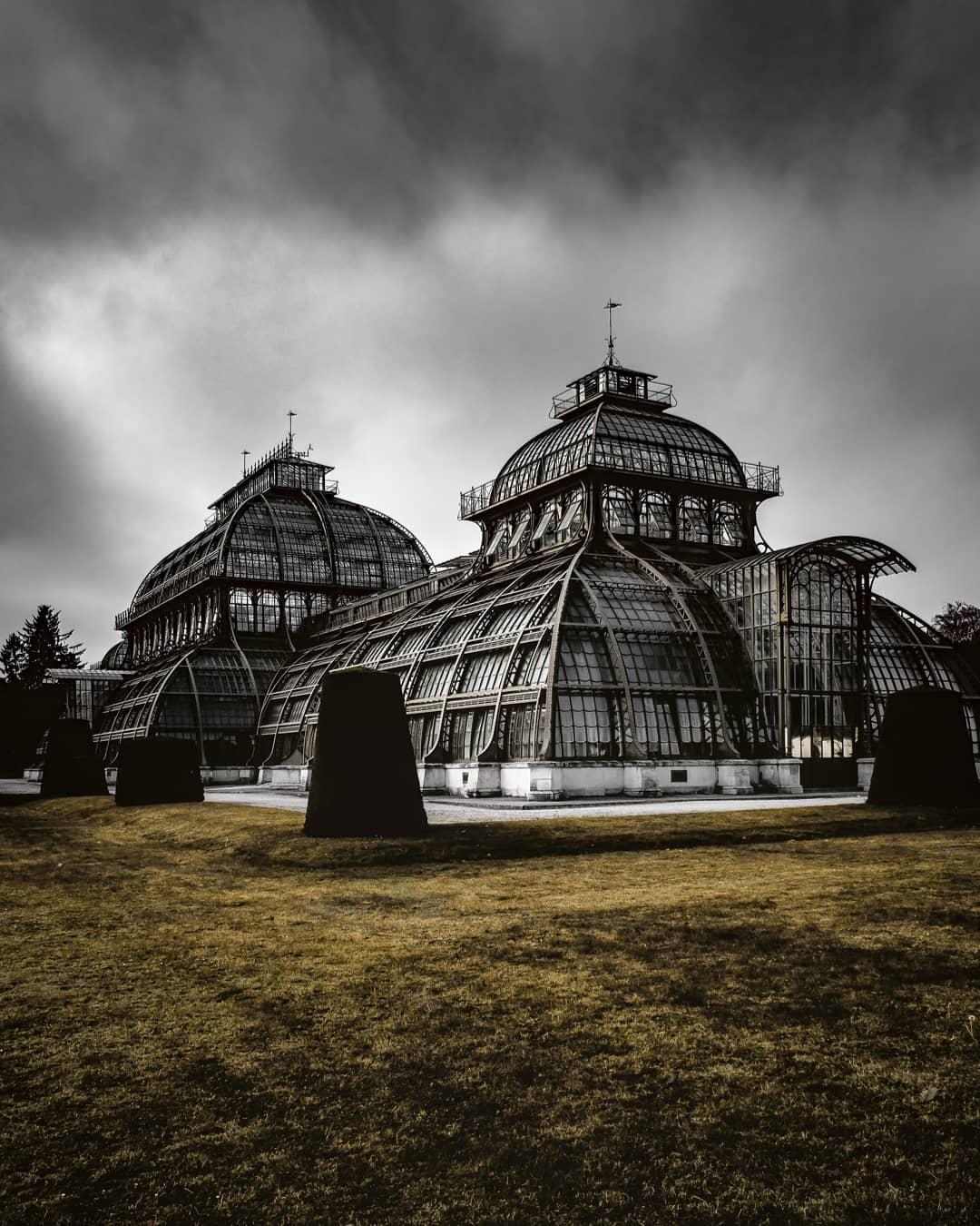 Das berühmte Palmenhaus in Schönbrunn