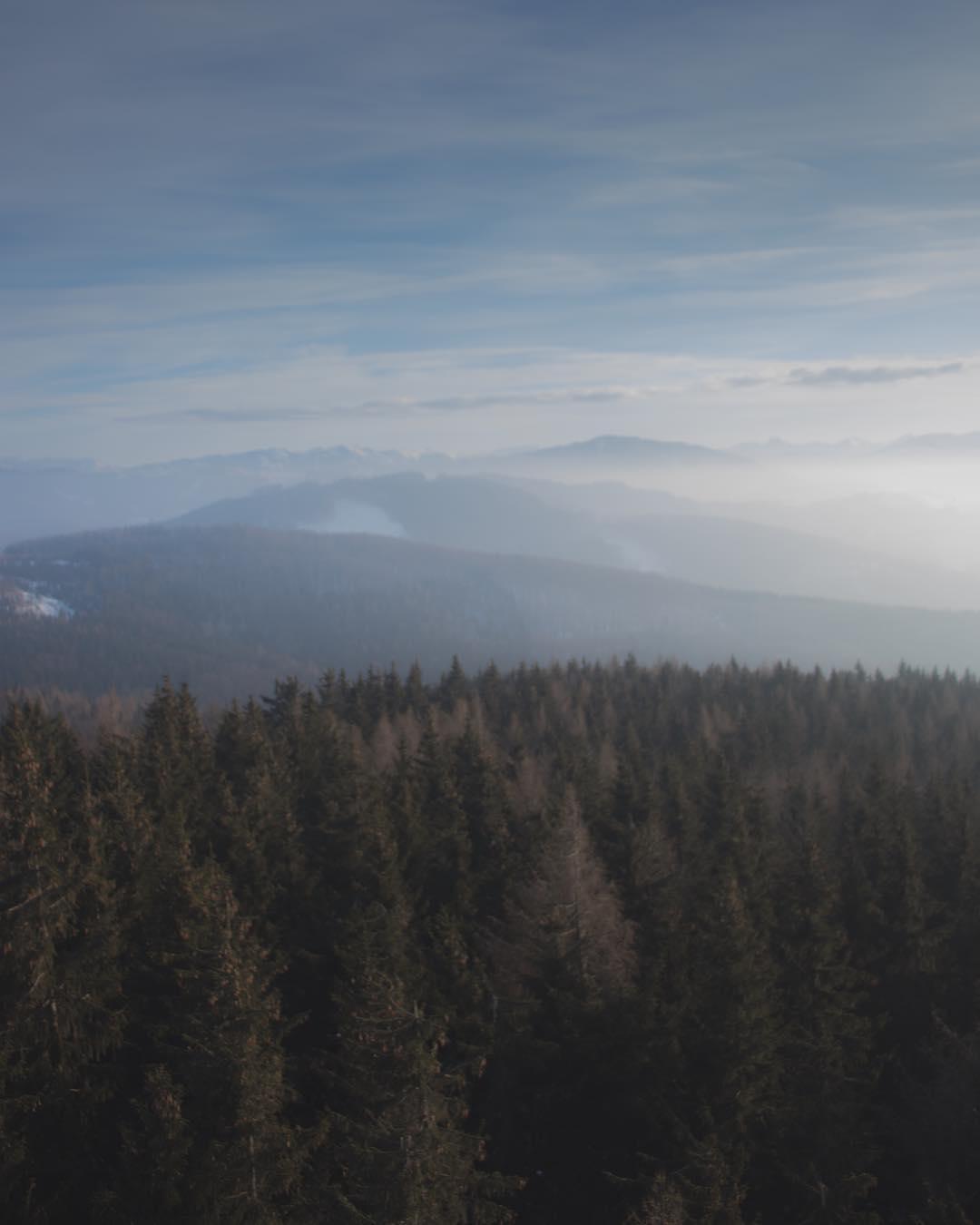 Ausblick von der Dambergwarte